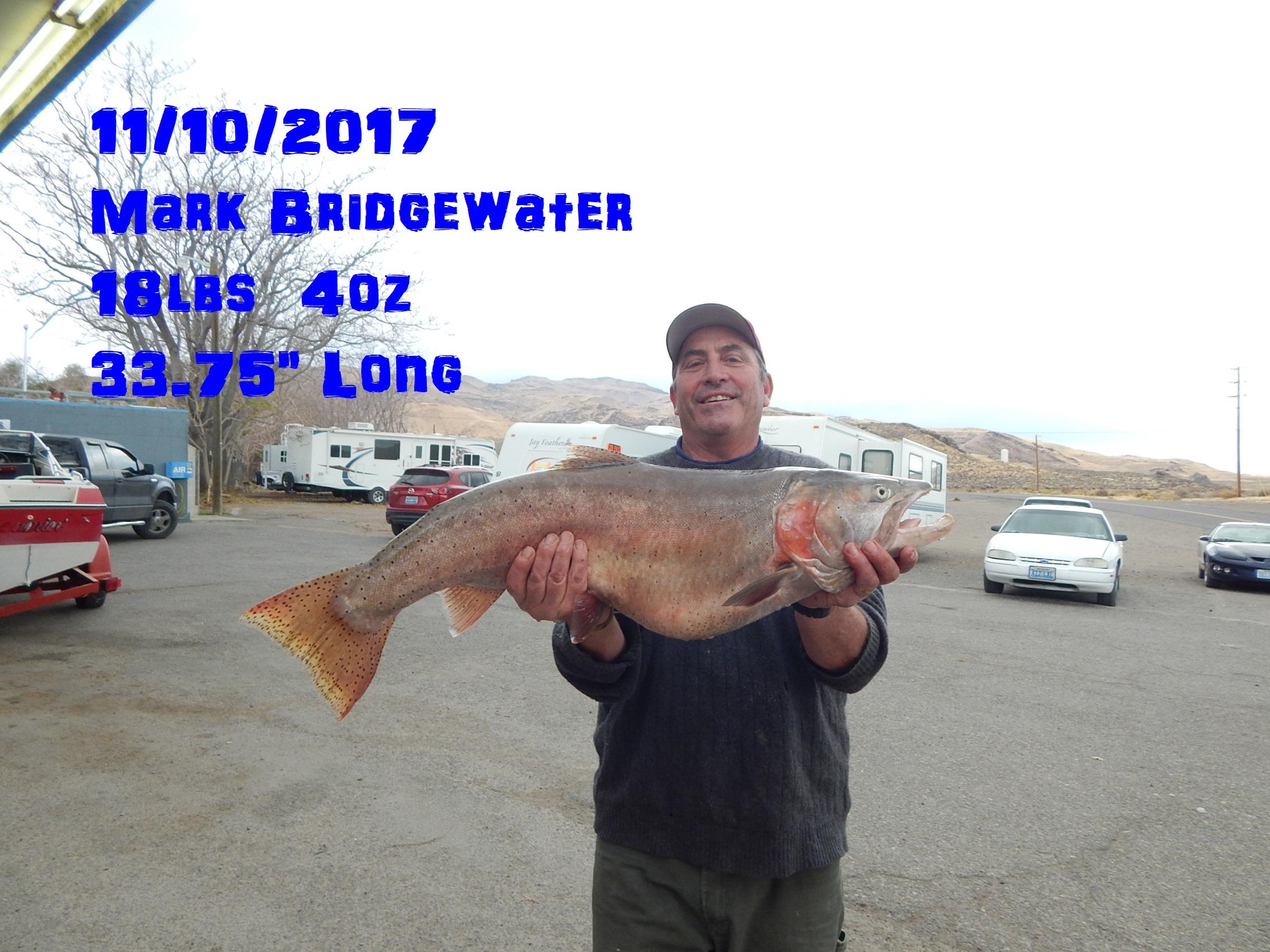 Mark Bridgewater 11-10-17.jpg