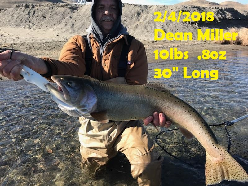 Dean Miller - 2-4-18 - Catch and Release.jpg