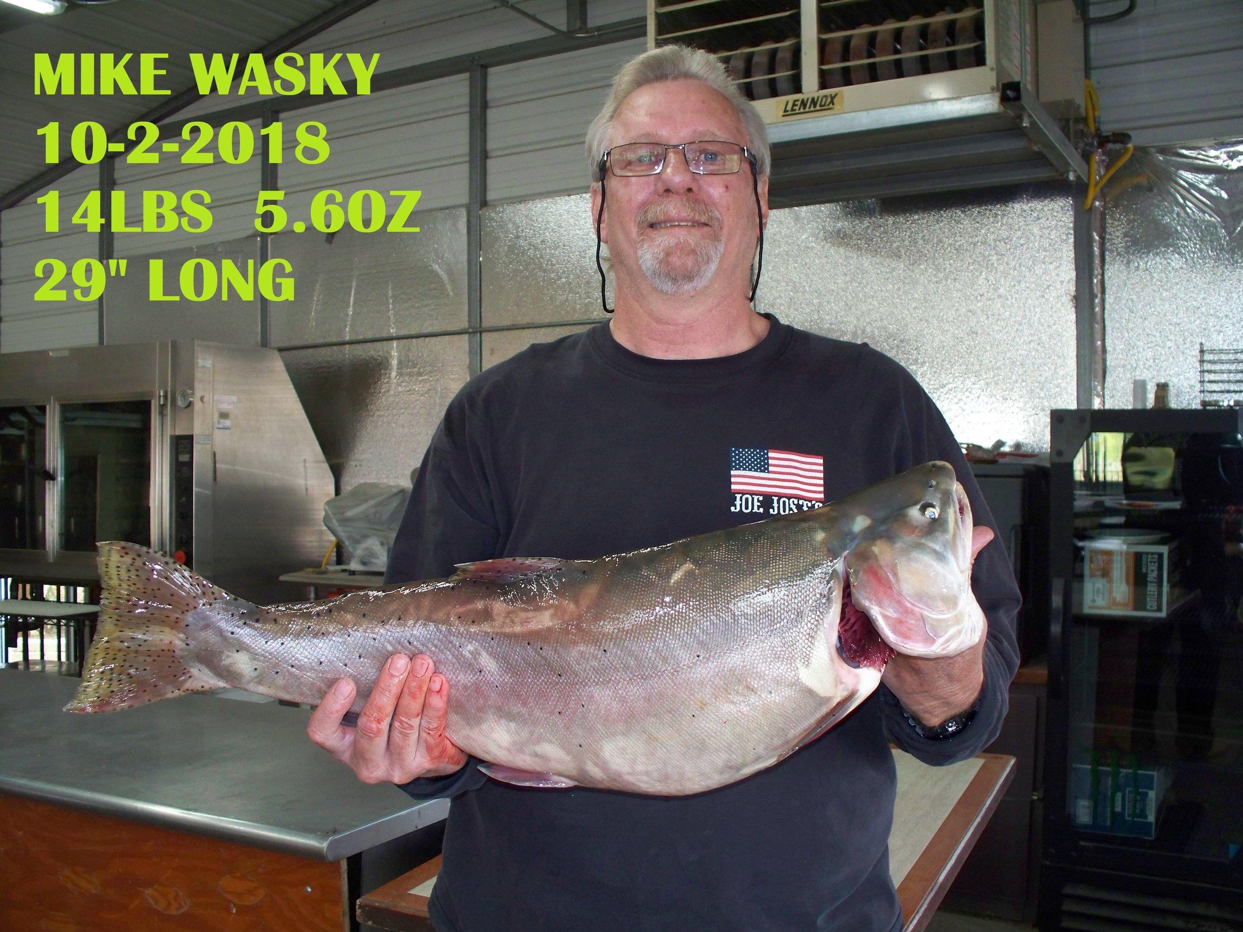 MIKE WASKY 10-2-18.jpg