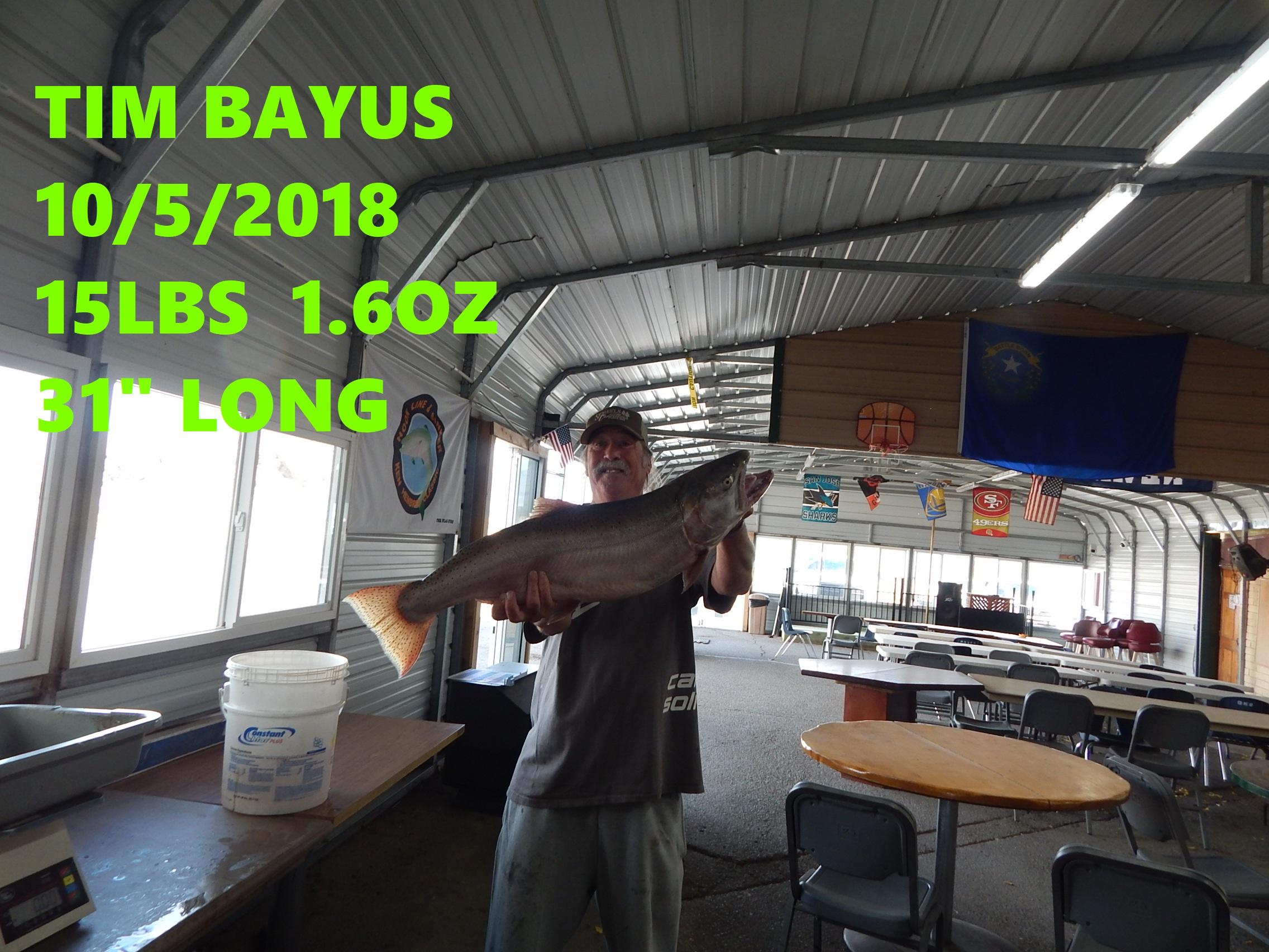 TIM BAYUS 10-5-18.jpg