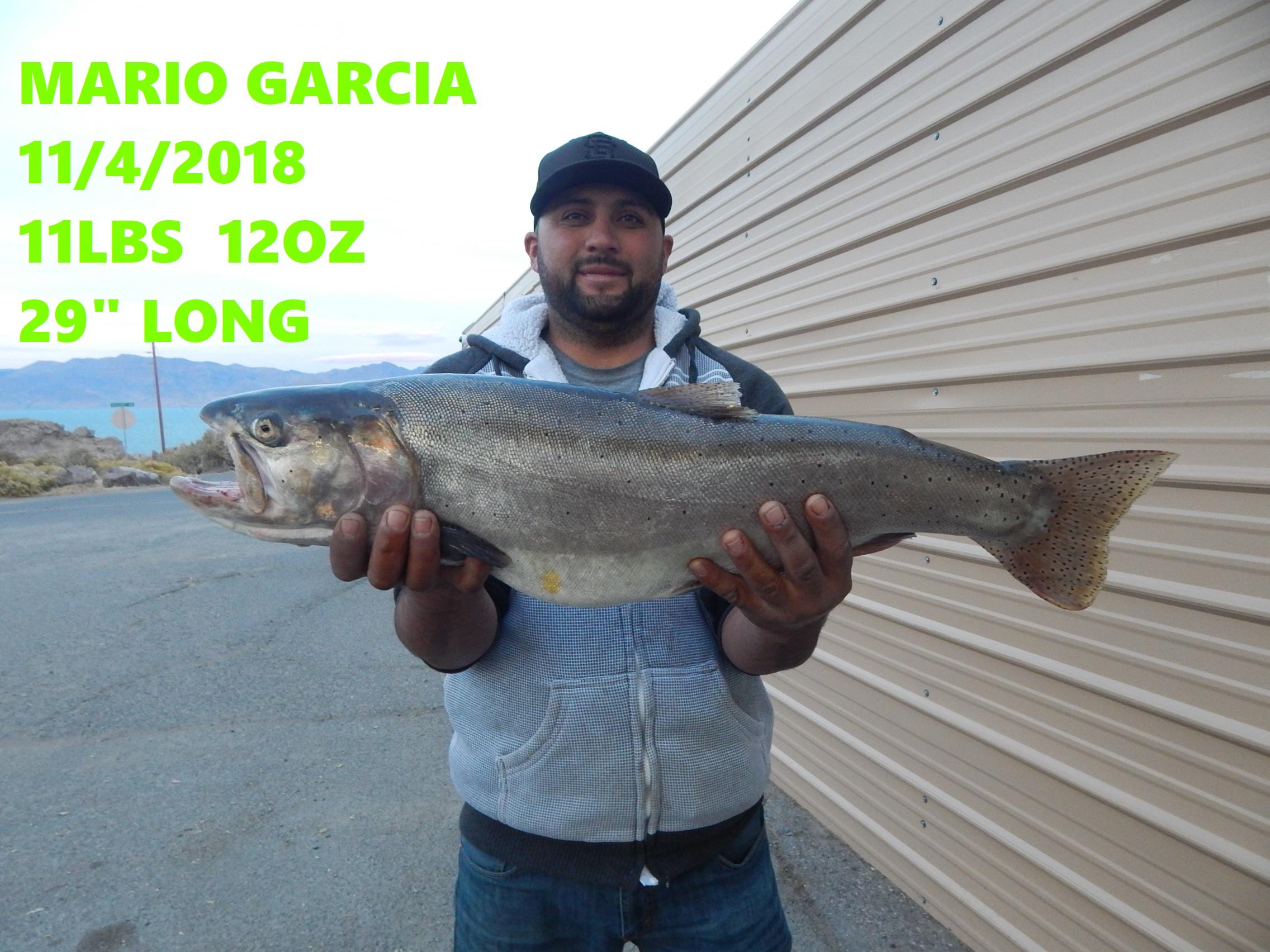 MARIO GARCIA 11-4-18.jpg