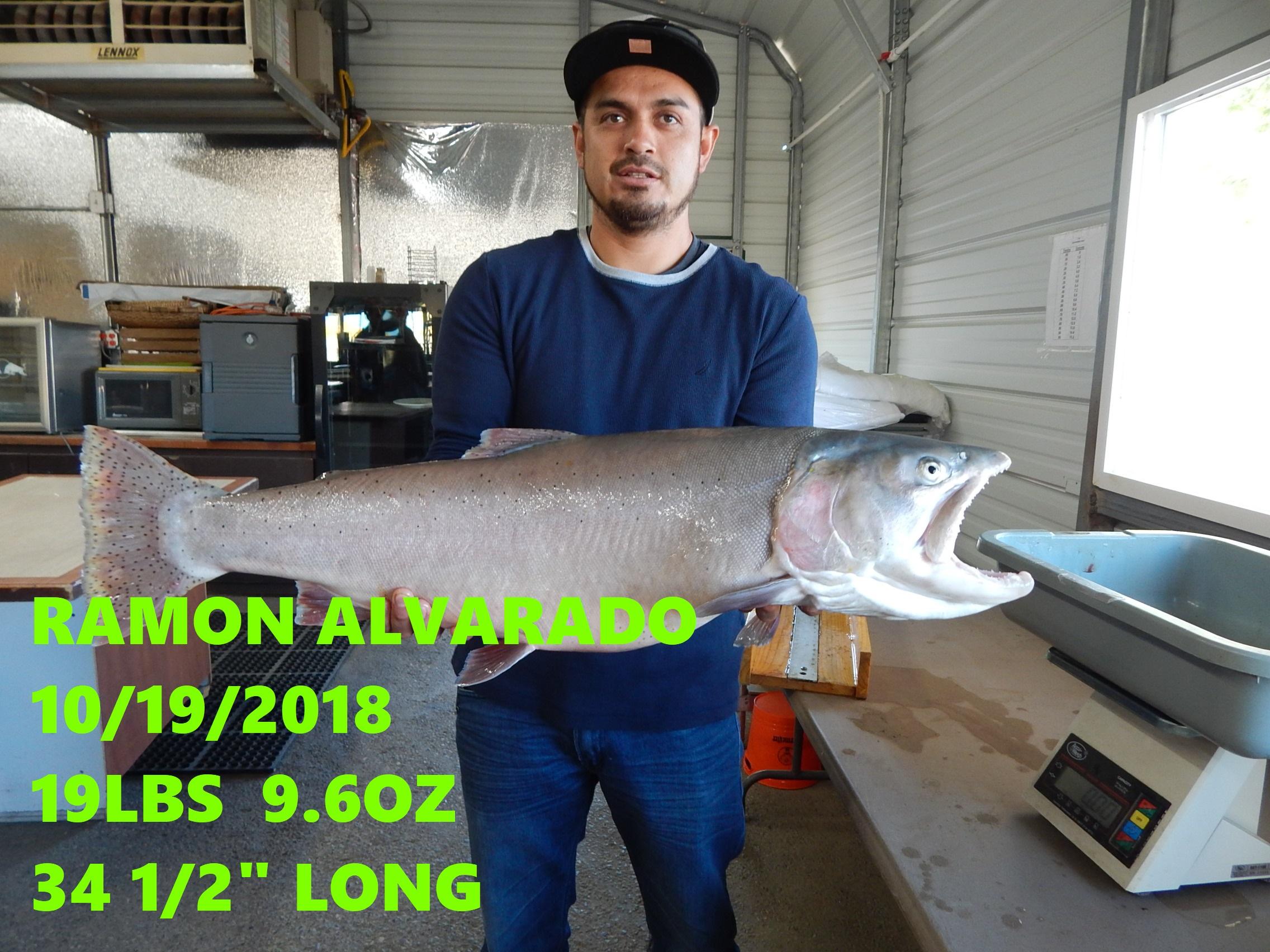 RAMON ALVARADO 10-19-18.jpg