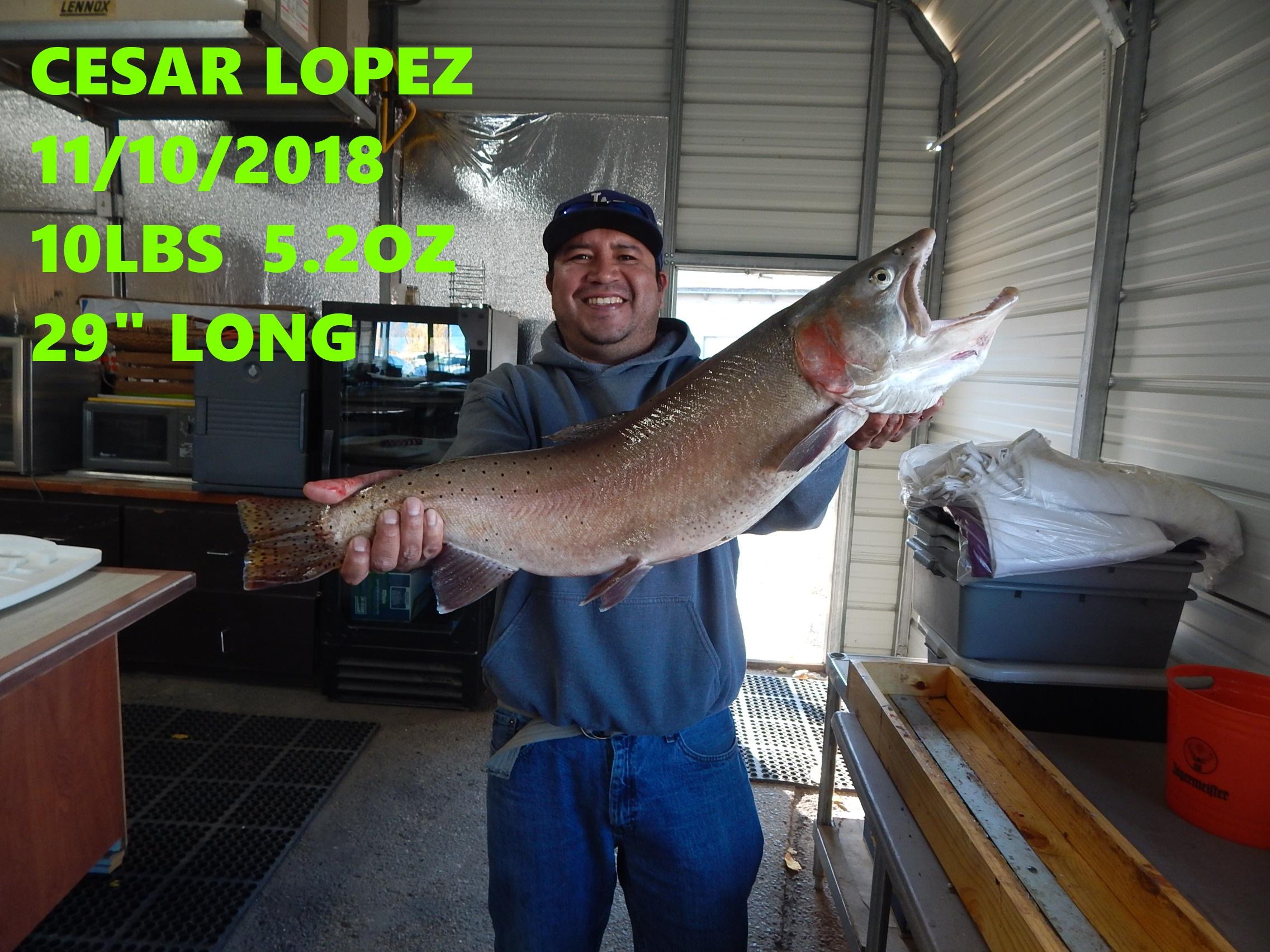CESAR LOPEZ 11-10-18.jpg