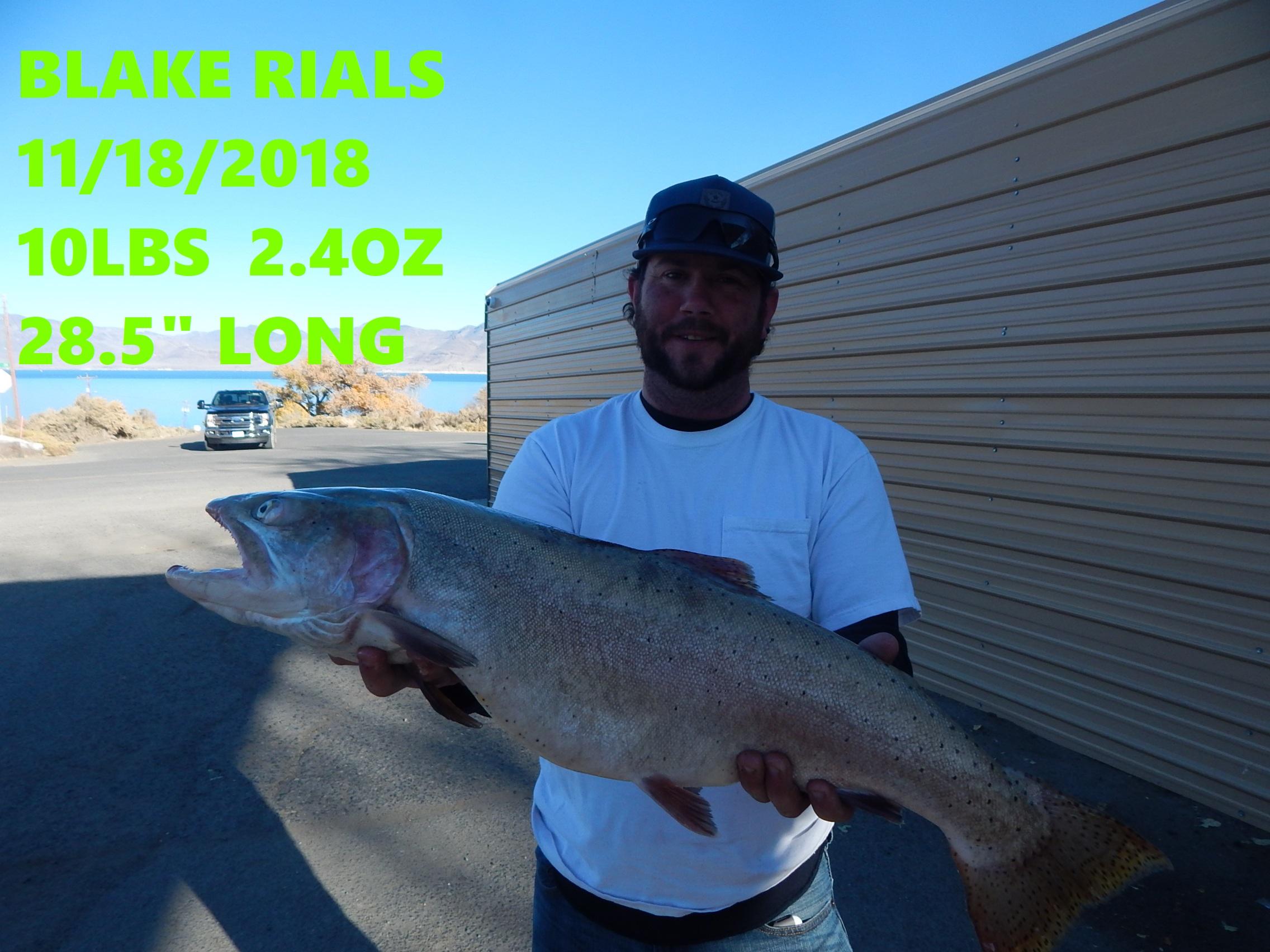 BLAKE RIALS 11-18-18.jpg