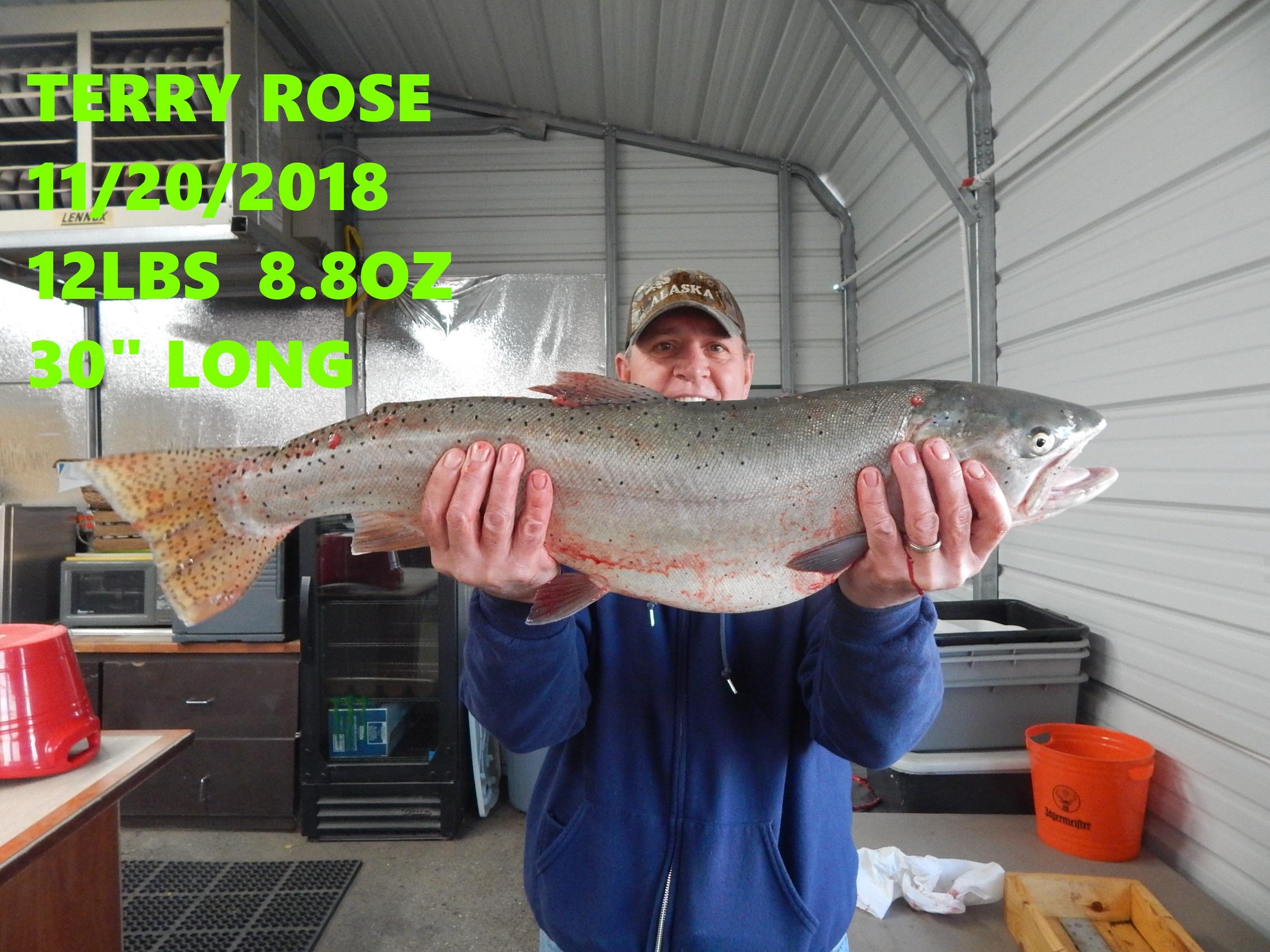 TERRY ROSE 11-20-18.jpg