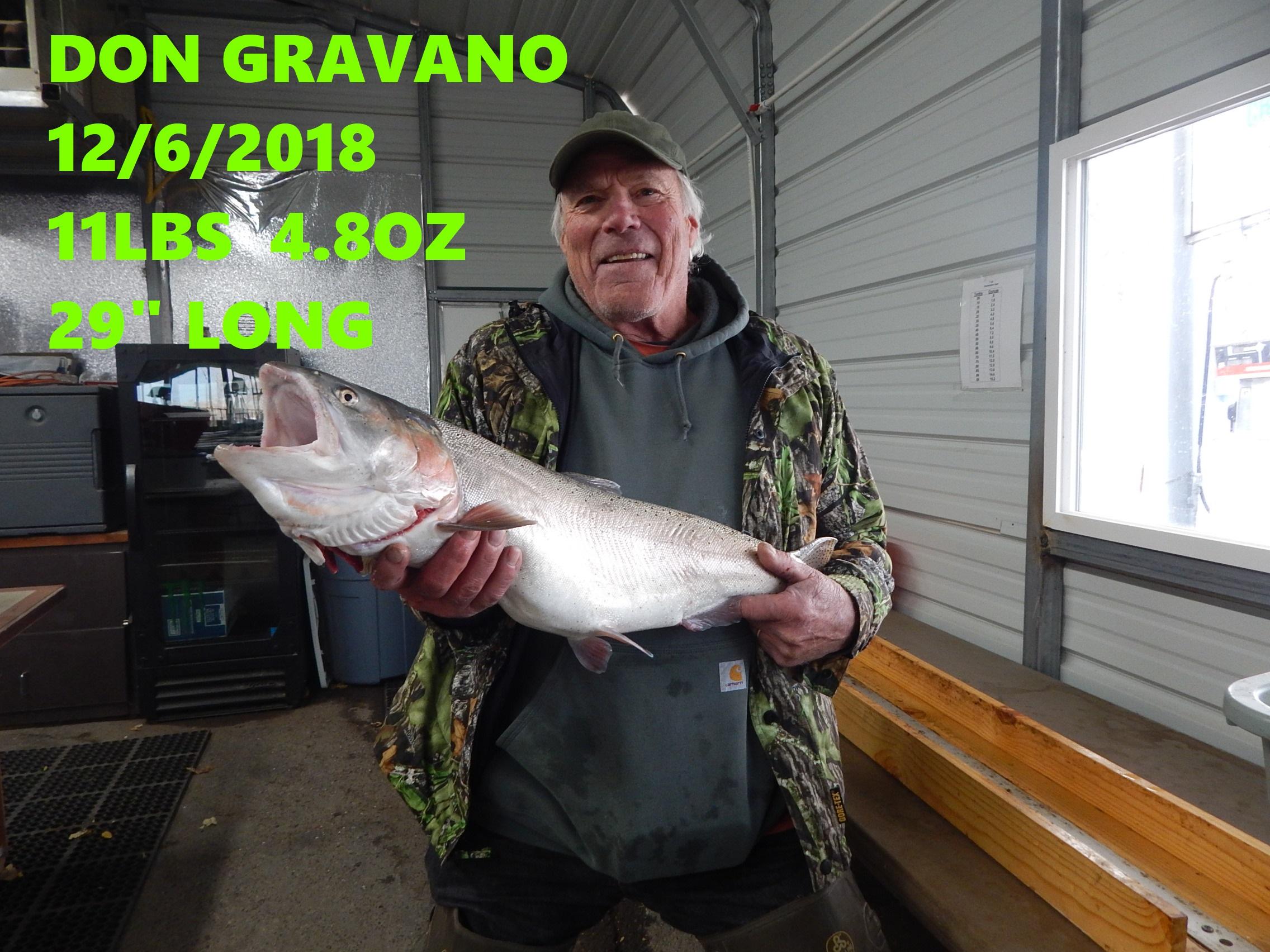 DON GRAVANO 12-6-18.jpg