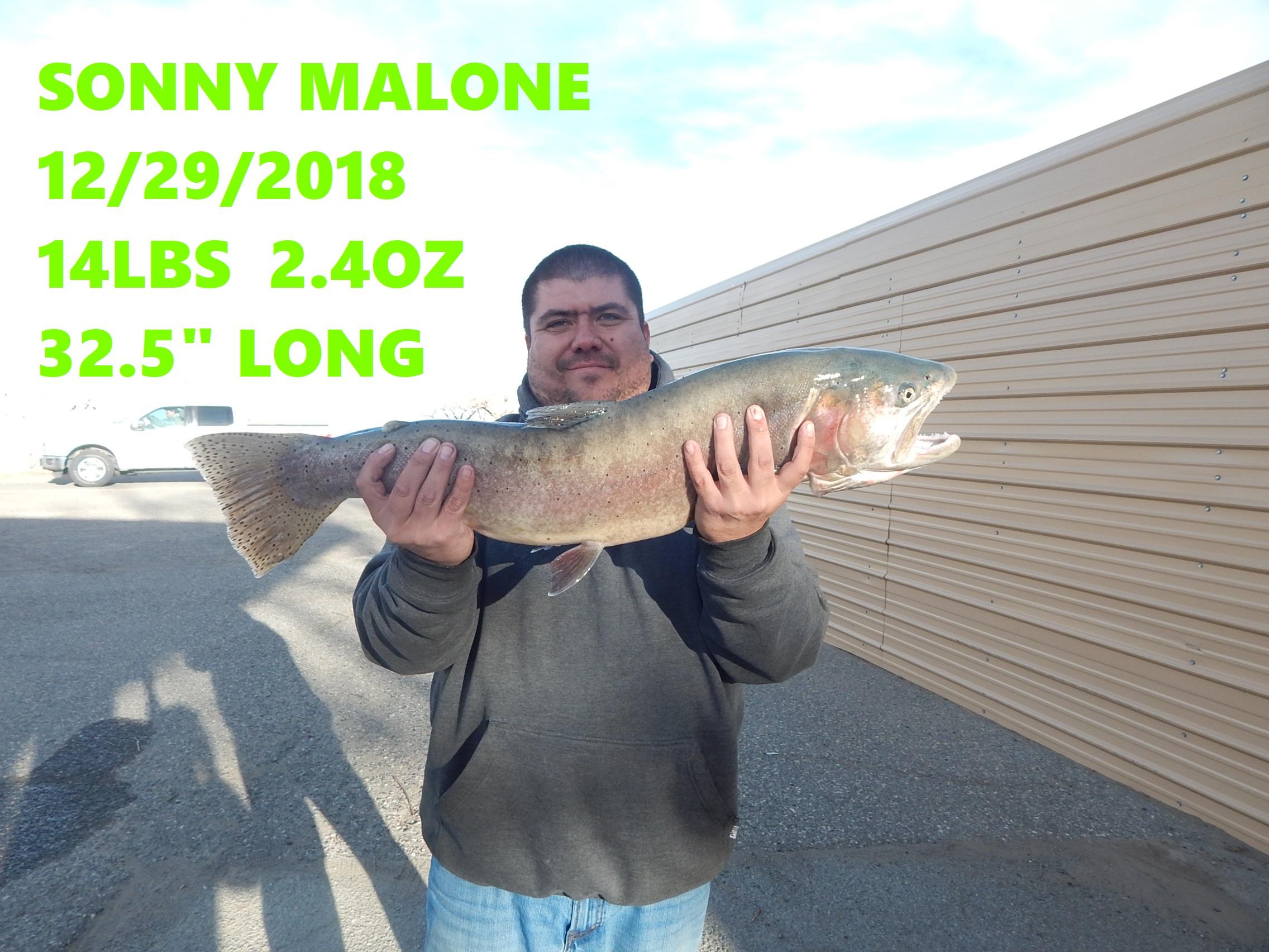 SONNY MALONE.jpg