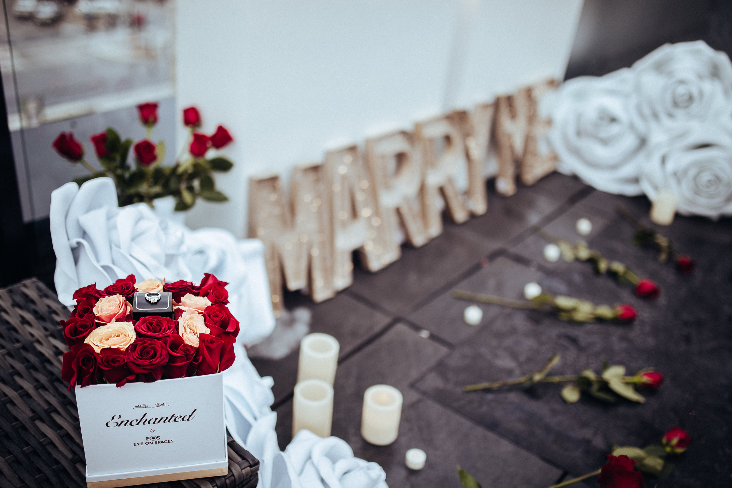 Enchanted_Proposal_2018-10.jpg