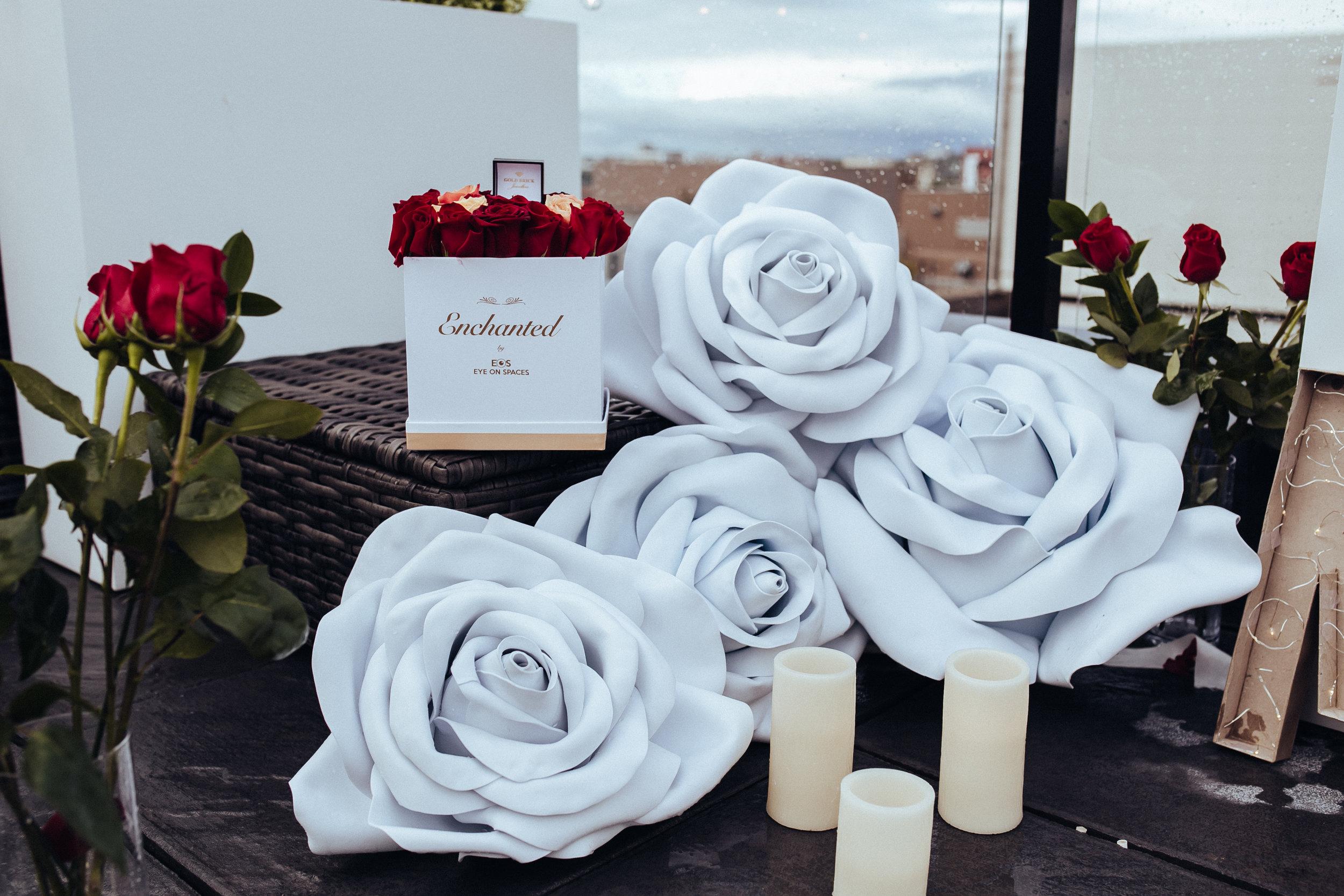 Enchanted_Proposal_2018-19.jpg