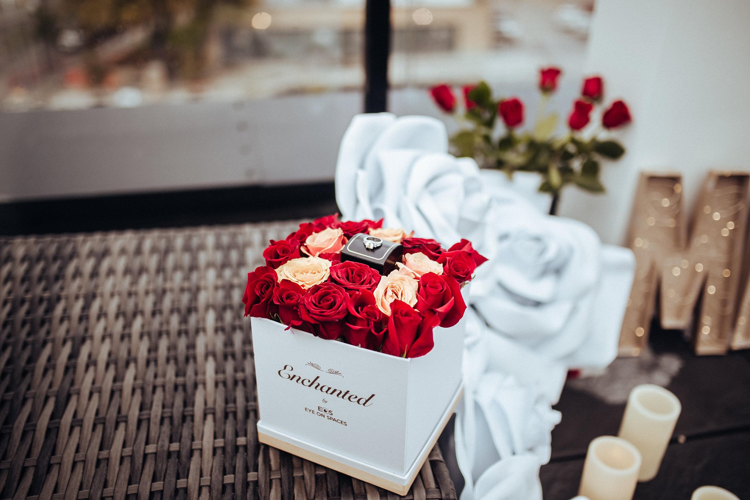 Enchanted_Proposal_2018-9.jpg