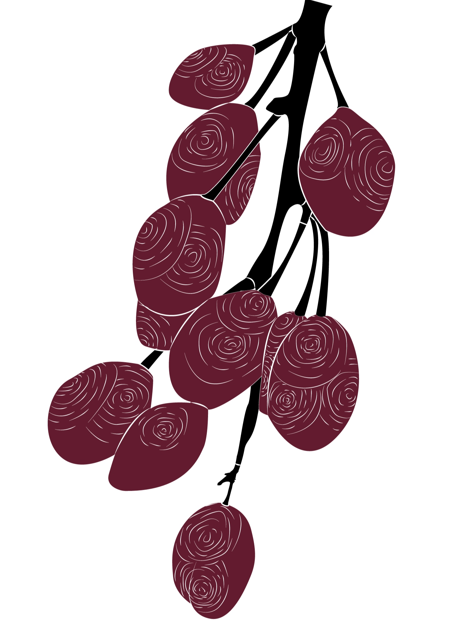 Plum-Branch-Black.jpg