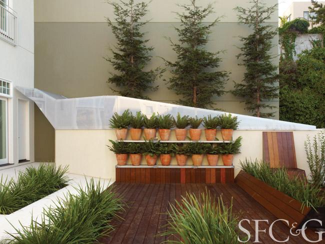 gardening-atmosphere-environment-walter-hood-rooftop-garden-telegraph-hill-plants.jpg