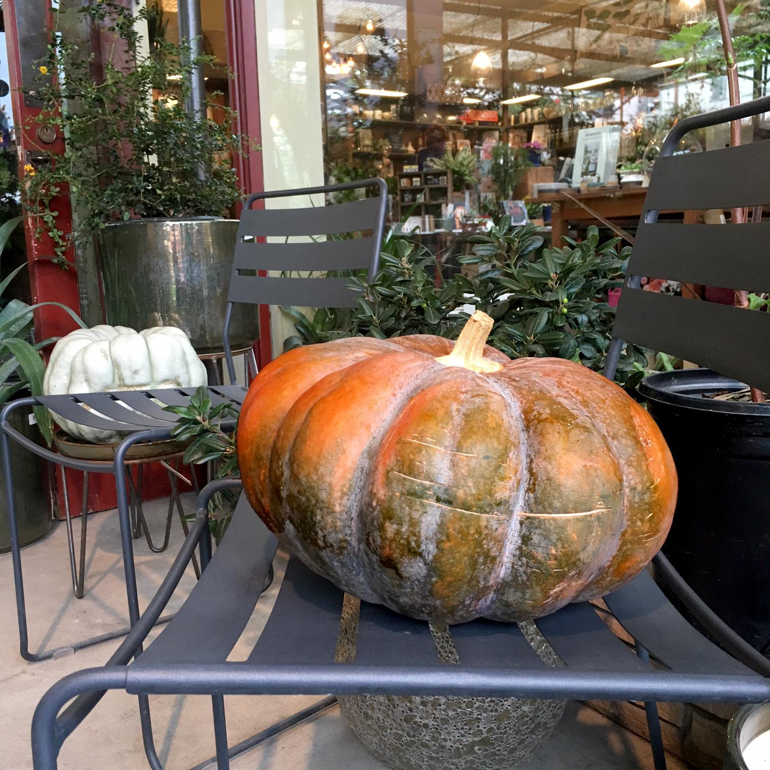 Pumpkin on chair.jpg