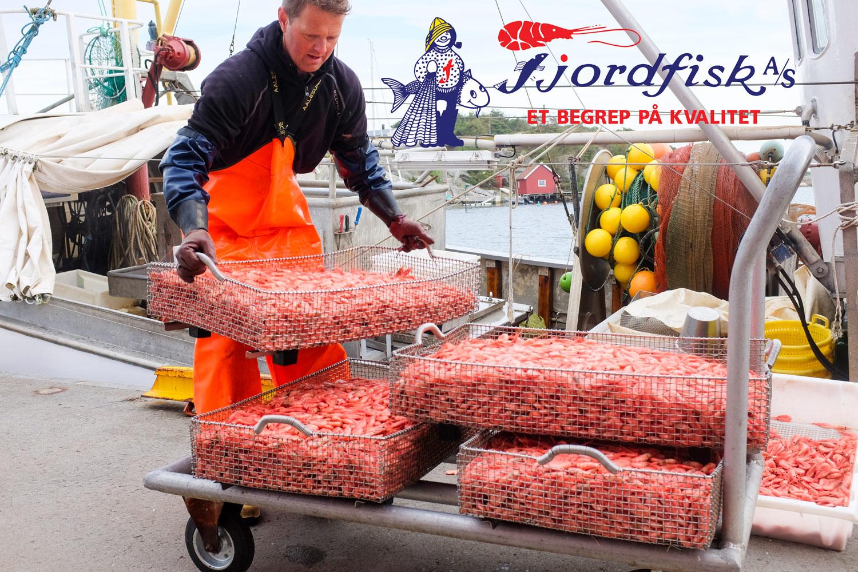 fjordfisk-annnonse-Hvaler-Rekefisker-JPEG-DSCF7305.jpg