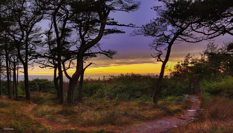 Hvaler-kyststien-web-Untitled_Panorama2.jpg