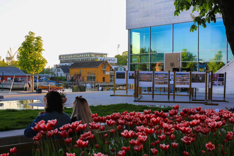 Et triangel av underholdning, kunnskapsformidling, og matglede  - Litteraturhuset til høyre, Norges beste sjømatrestaurant i gul bygning sees på andre siden av elven, og Båthuset Scene sørger for sommerrevy hele sommeren gjennom og ellers i året konserter og juleshow.