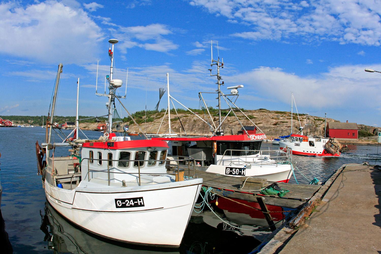 Fjordfisk--og-91.jpg