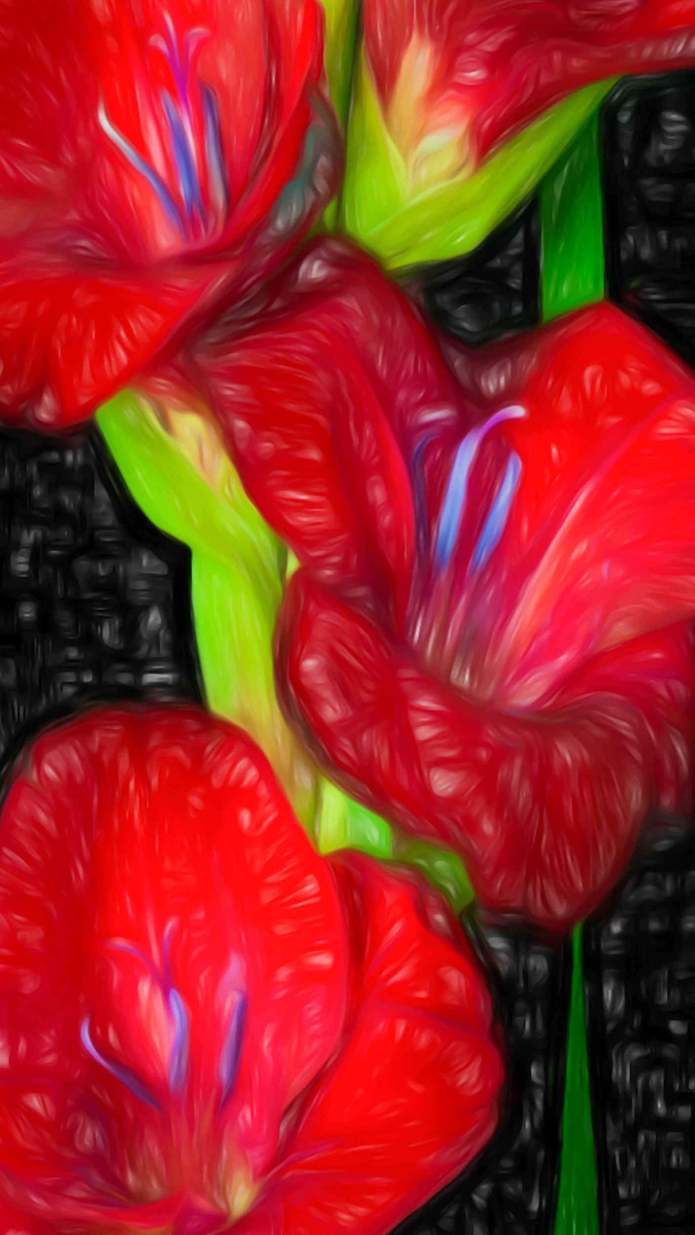 """Studio Red"" - Photography Artist Kevin Sibbitt"