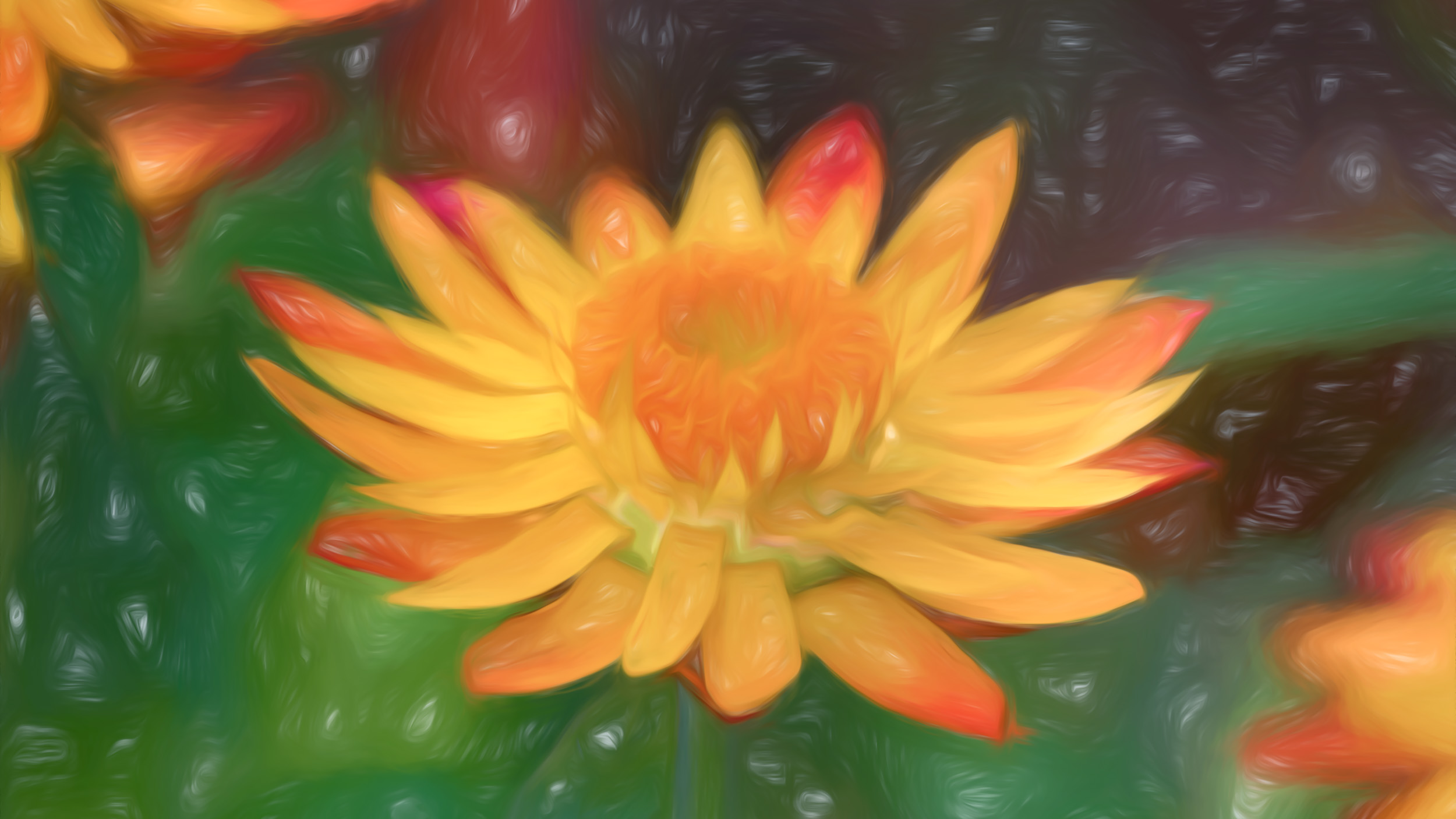 """Strawflower"" - Photography Artist Kevin Sibbitt"
