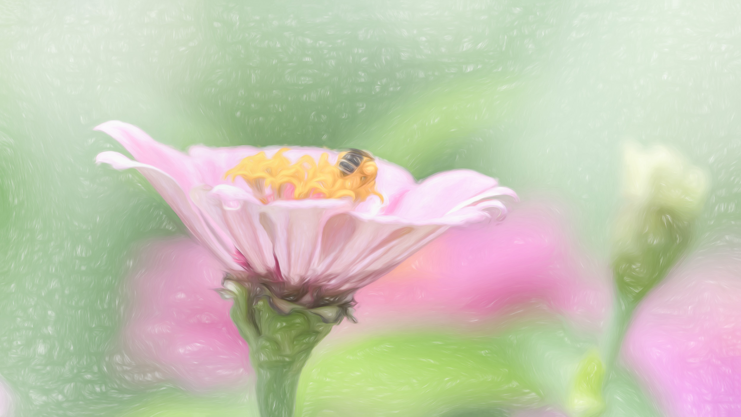 """Simplicity"" - Photography Artist Kevin Sibbitt"