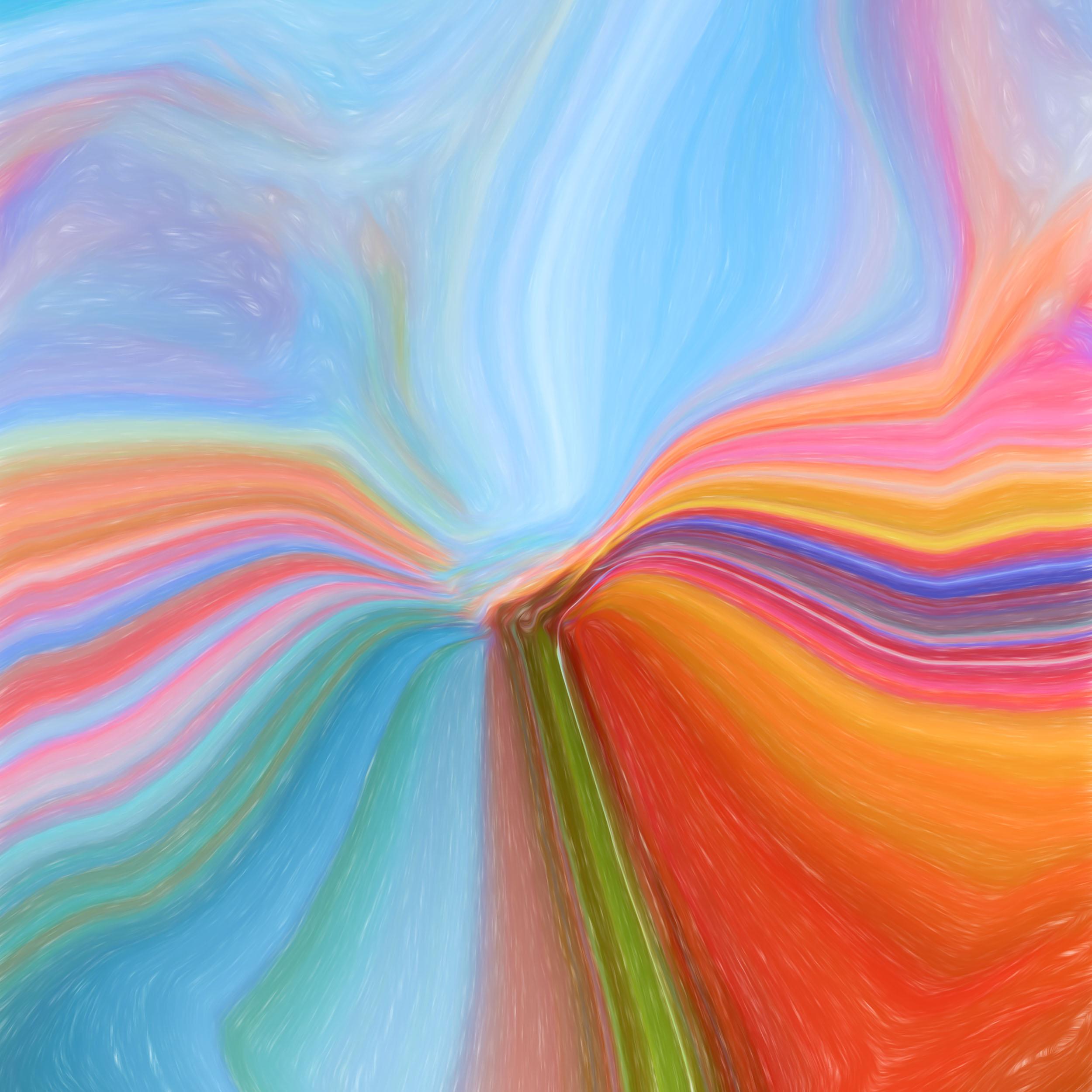 """Sunlight Flower Squared"" - Photography Artist Kevin Sibbitt"