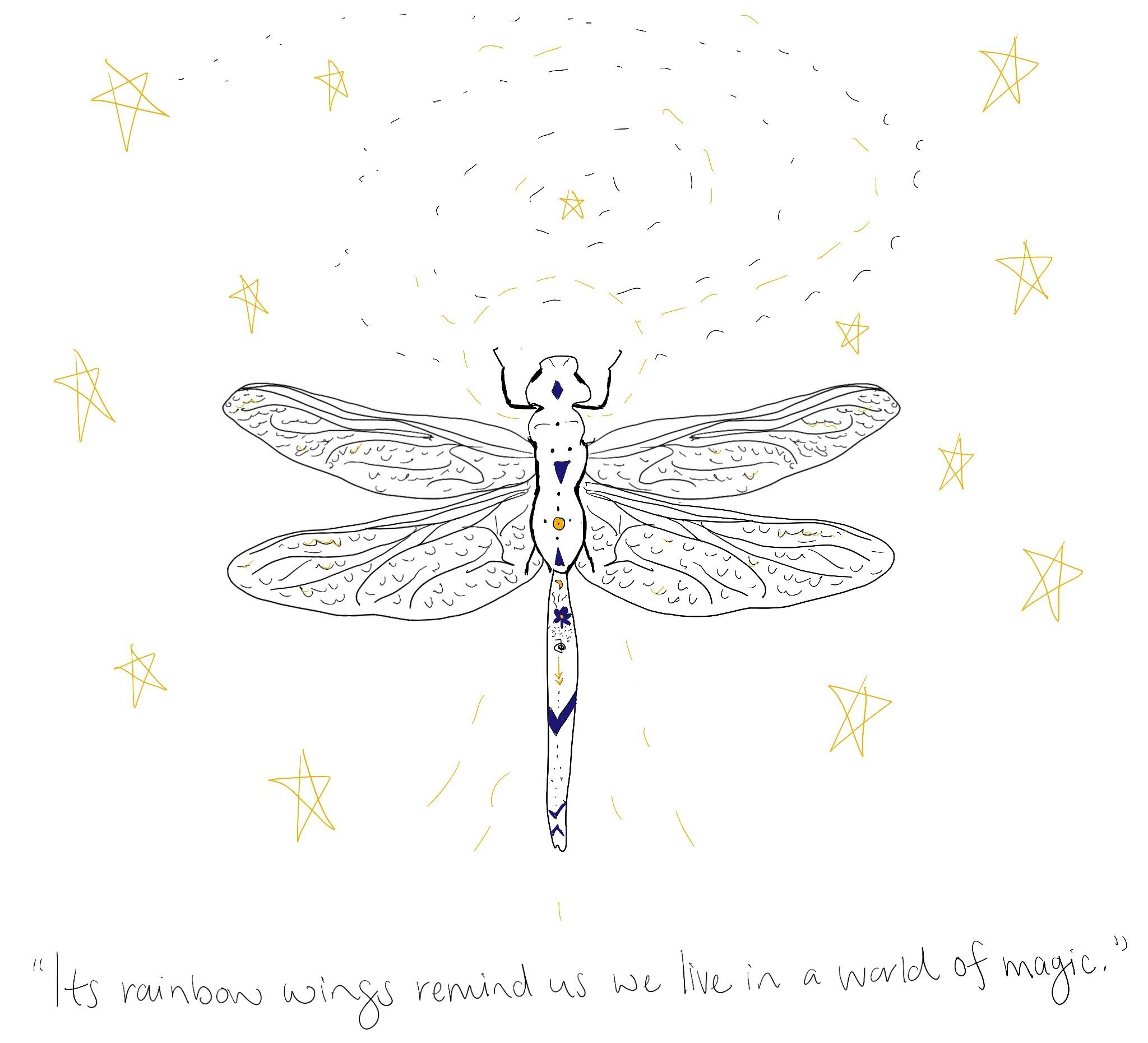 dragonfly-magic.jpg