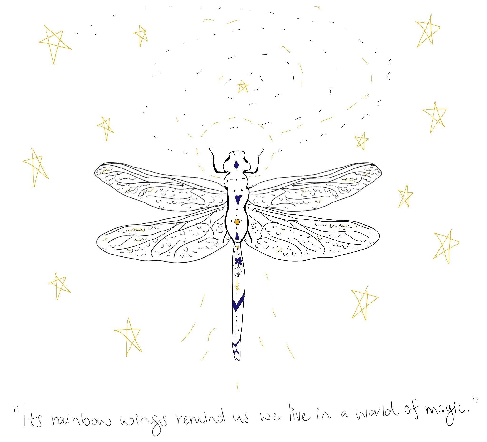 dragonfly-magic.jpg