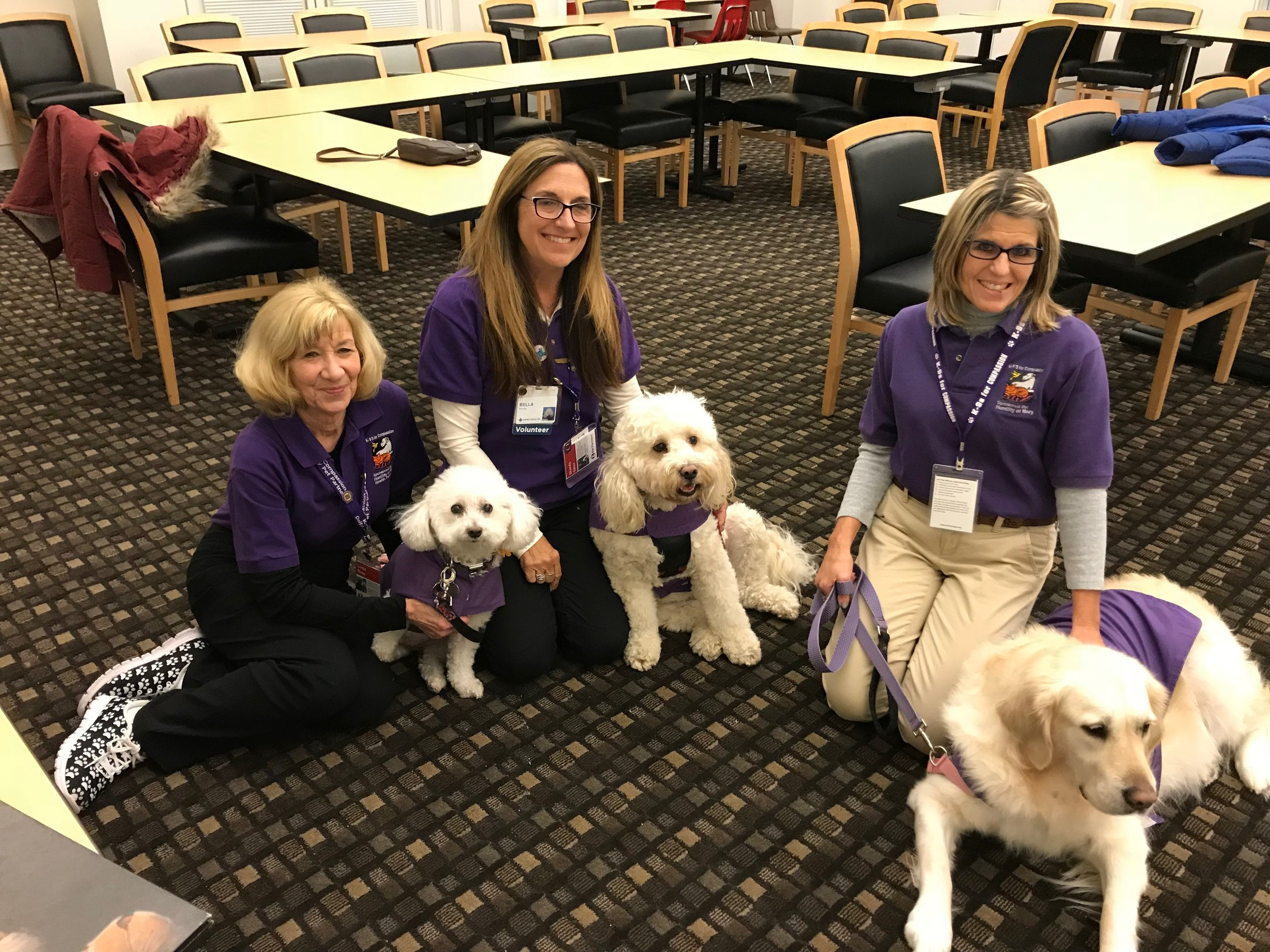 K-9s for Compassion, Therapy Animal Group