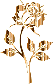 Gold-Rose-Silhouette-2-No-Background.png