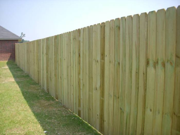 Treated-Pine-Privacy-Fence (1).jpg