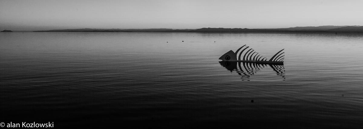 Bombay Beach Biennale-39.jpg