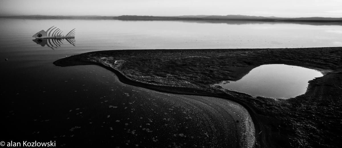 Bombay Beach Biennale-82.jpg