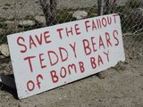 Bomb Bay Shelter