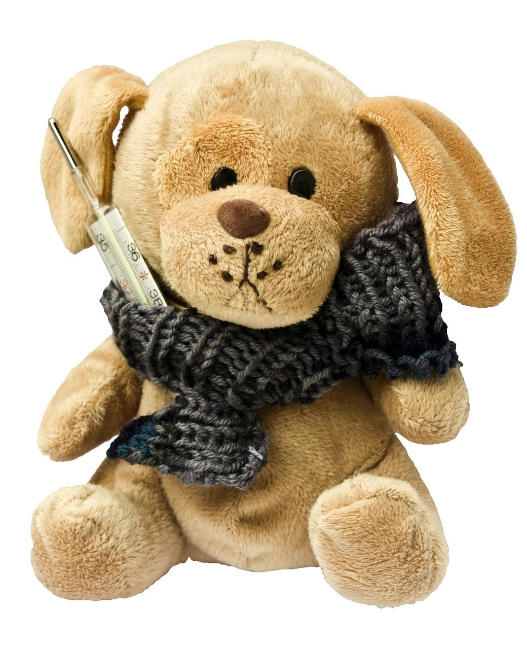 teddy-242878_1280.jpg