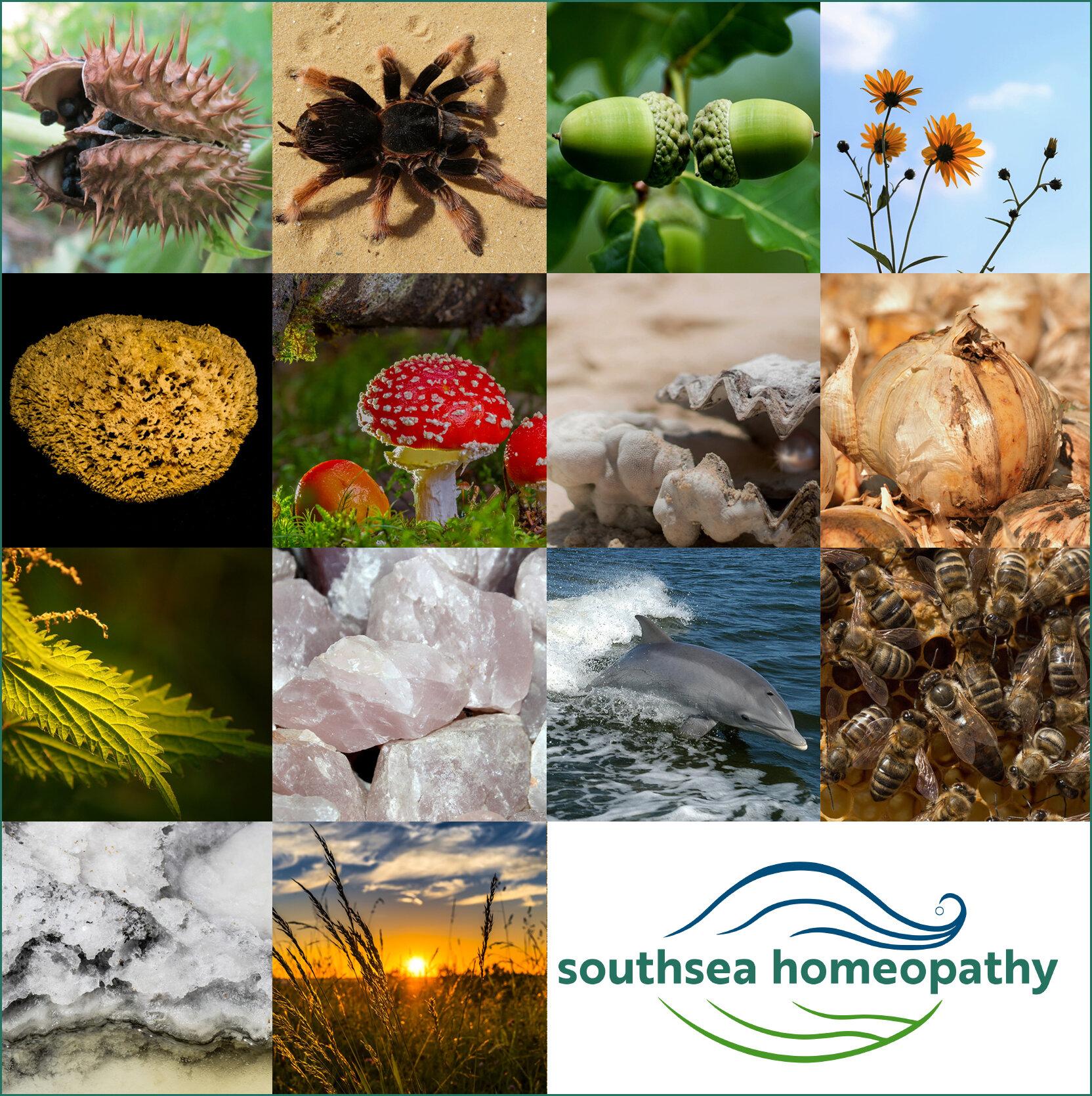 southseaHomeopathy_poster_varC_v001.jpg