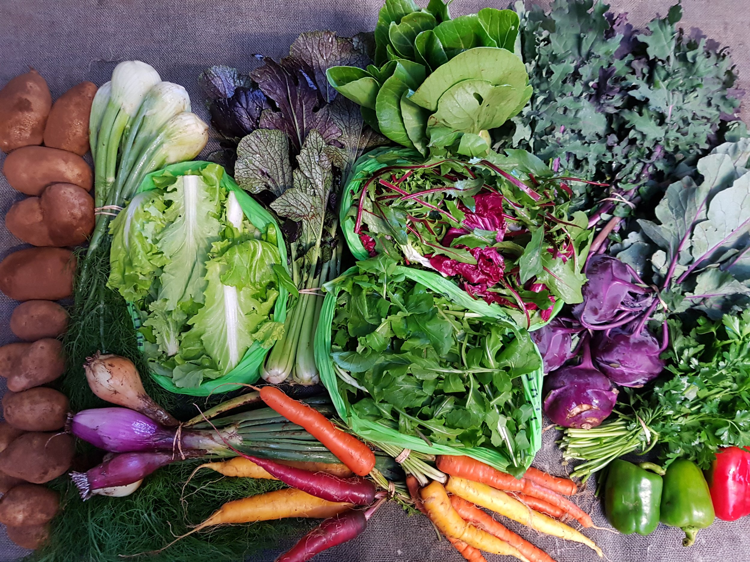 Autumn Feed-A-Family Box  May 2019 (sample only, produce may vary from week-to-week).
