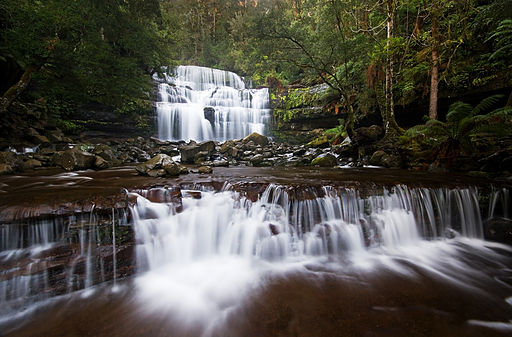 Liffey Falls, in the Tasmanian Wilderness World Heritage Area, is one of the highlights of our full-day caves and waterfalls excursion.