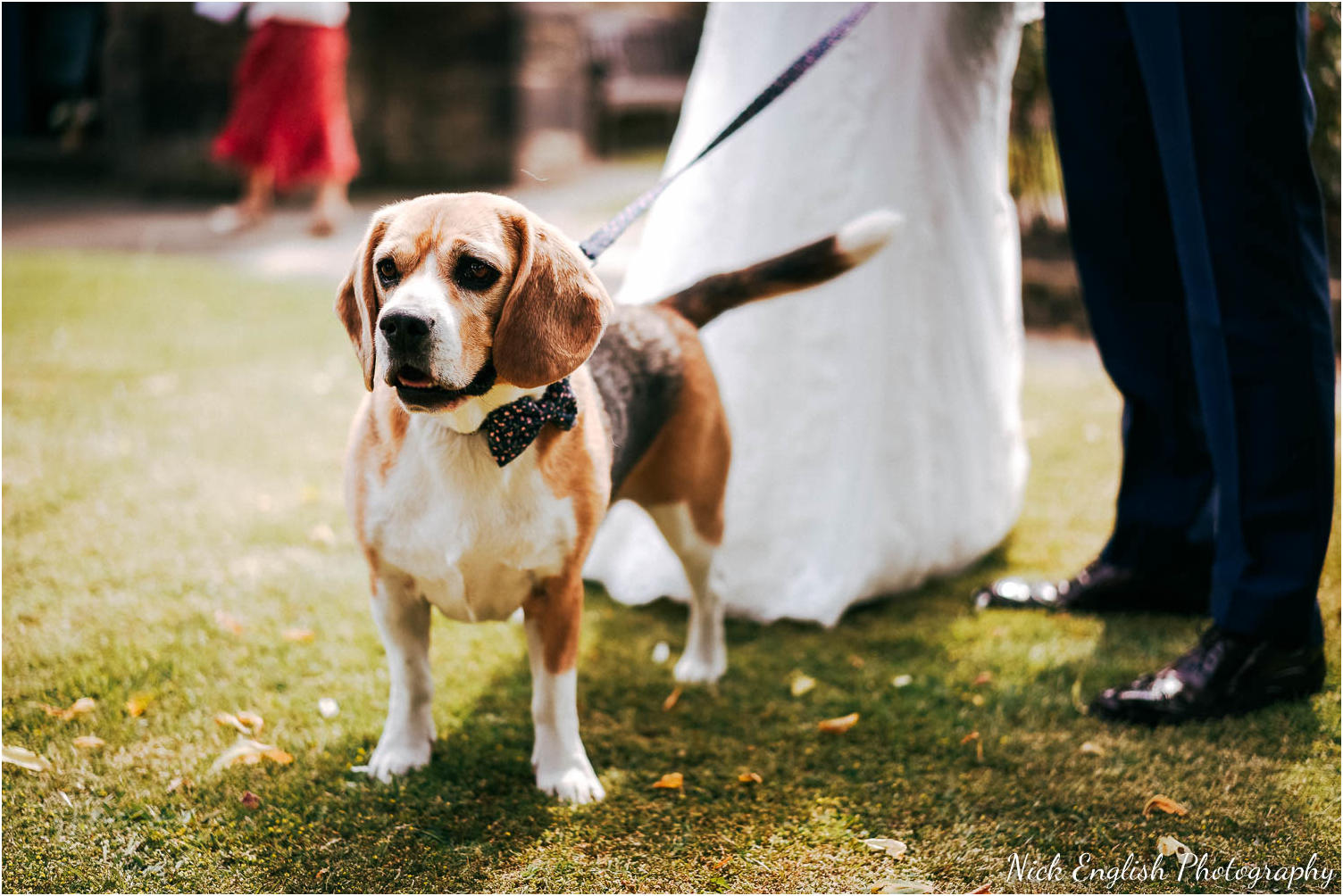 Mitton_Hall_Wedding_Photograph-60.jpg