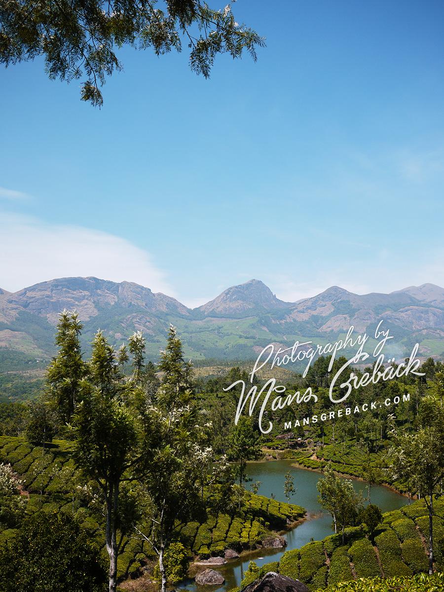 Tea Mountain Lake