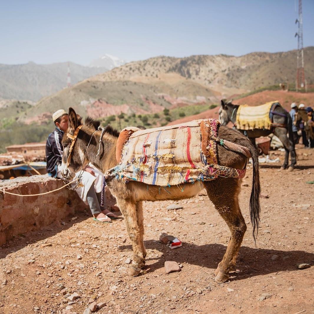Photographe toulouse presse reportage maroc atlas berbère Emilie Eychenne blog voyage 1.jpg