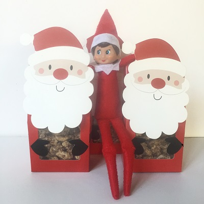 elf on the shelf candied pecans.jpg