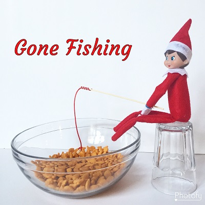 elf on the shelf gone fishing.jpg