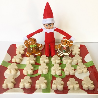 elf on the shelf yogurt gummies.jpg