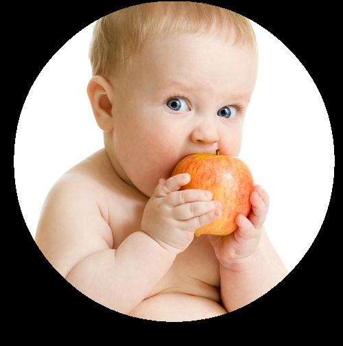 BLW whole apple 500x500 (2017_10_15 02_47_58 UTC).png