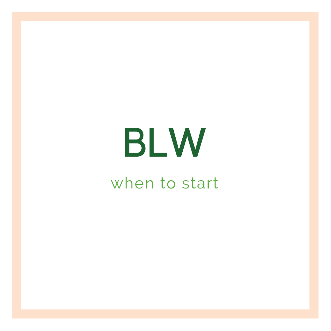 BLW when to start.png