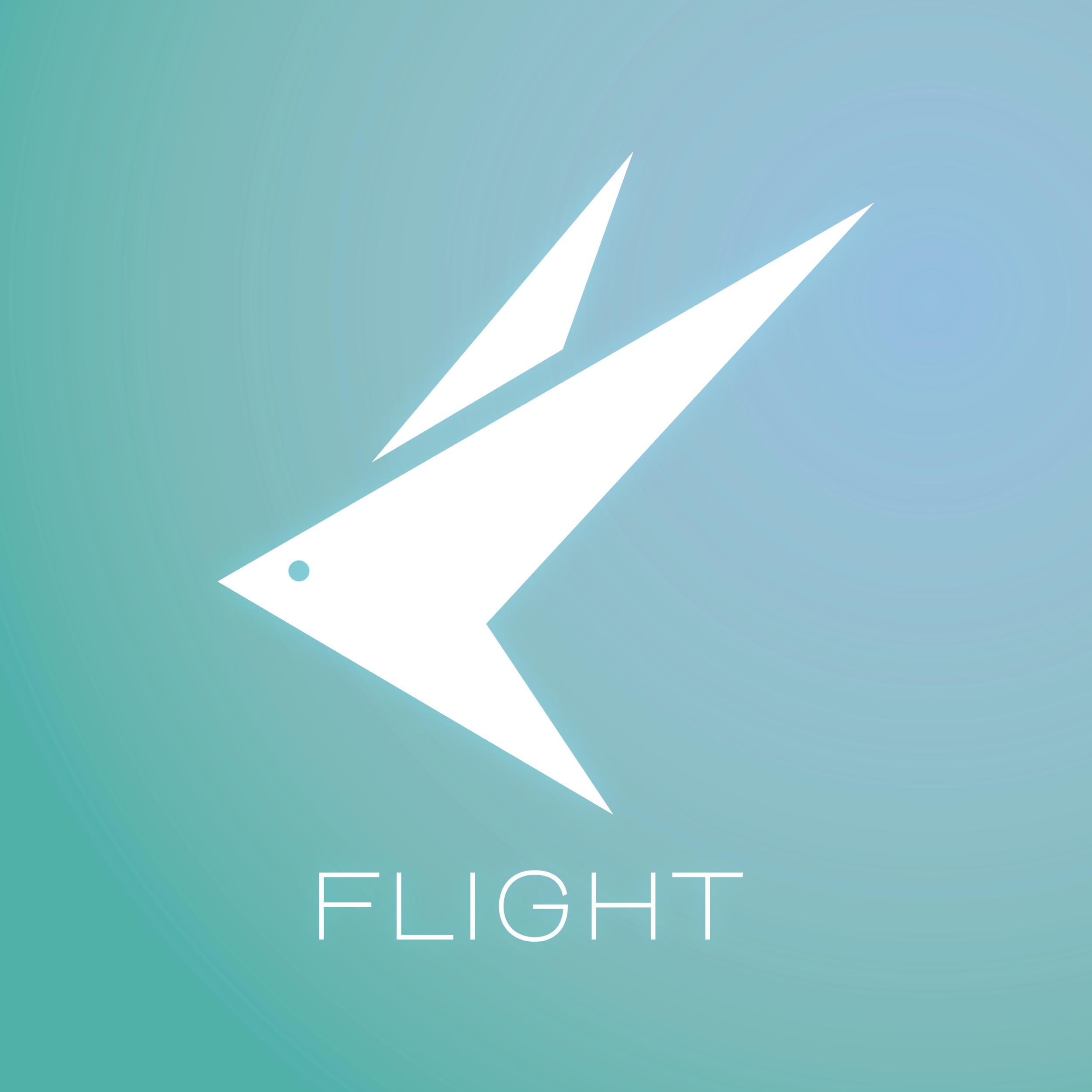 FLIGHT!.png