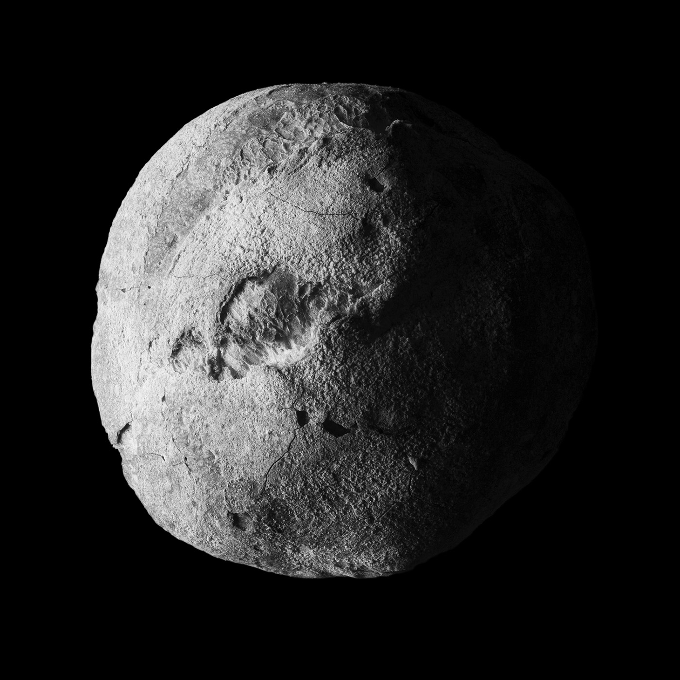 Luna Panis