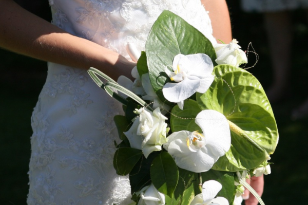 Wedding Florists in Bath - Introducing some of Bath's best florists from across Somerset and in Bath city centre