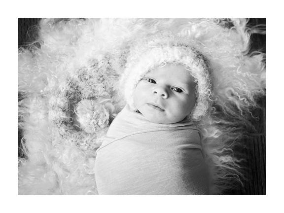 newborn050bw.jpg