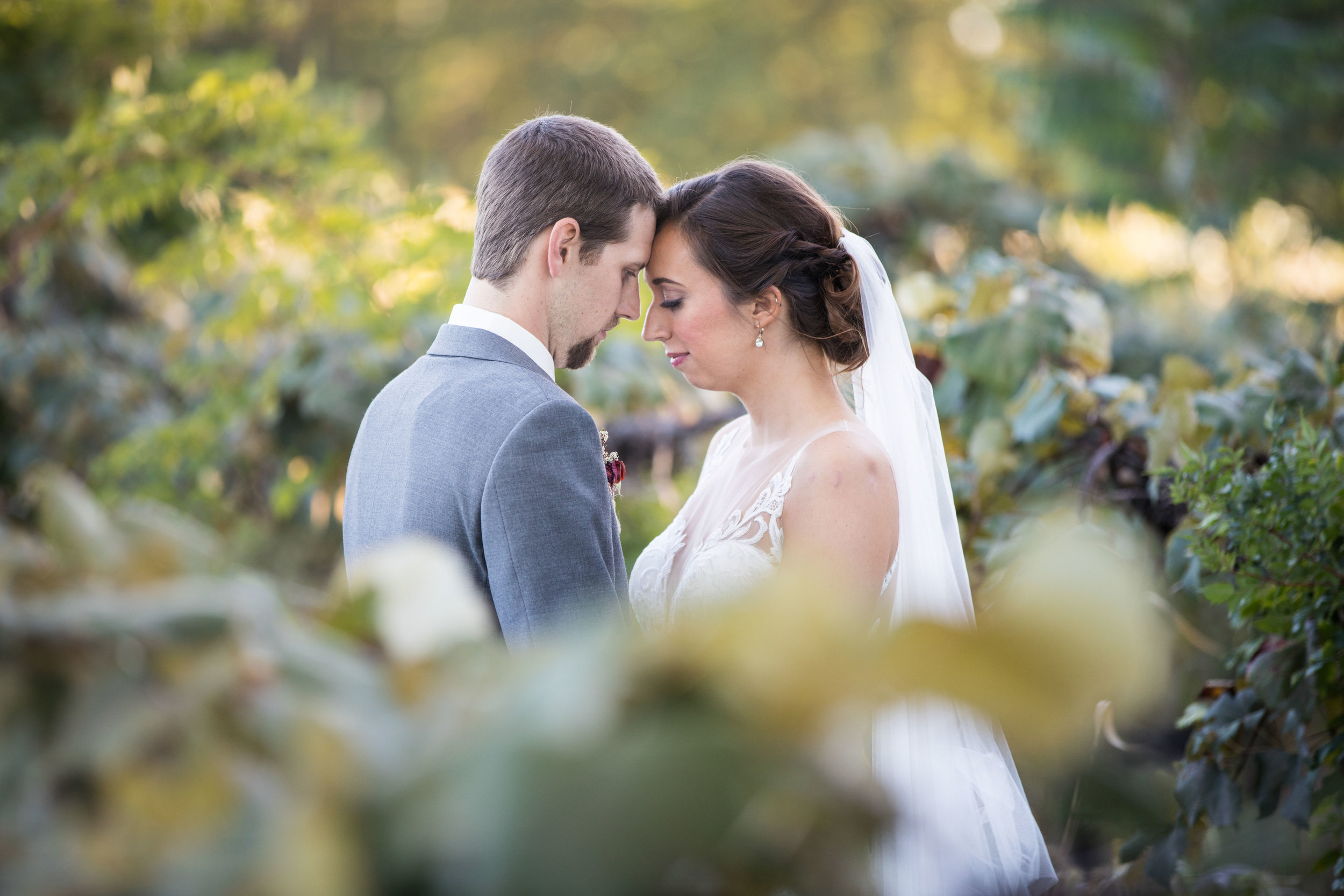Vineyard Wedding in Southwest Michigan